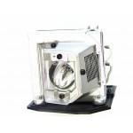 Lampe SANYO pour Vidéoprojecteur PDGDXL100 Original
