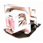 Lampe OPTOMA pour Vidéoprojecteur PRO450W Diamond