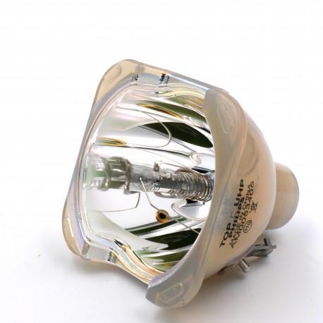 Ampoule seule pour vidéoprojecteur 3D Perception PZ30SX