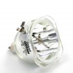 Ampoule seule pour vidéoprojecteur Plus U2-1110