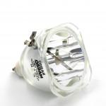 Ampoule seule pour vidéoprojecteur Plus U2-1130