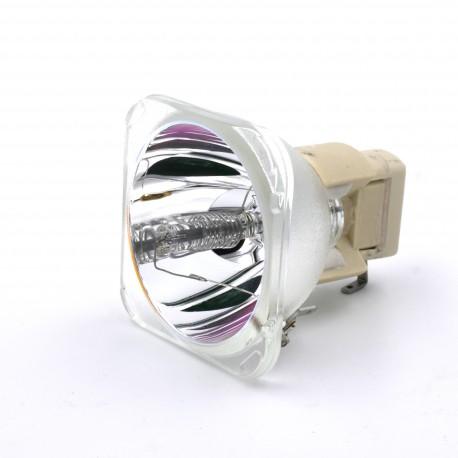 Ampoule seule pour vidéoprojecteur Acer PD528