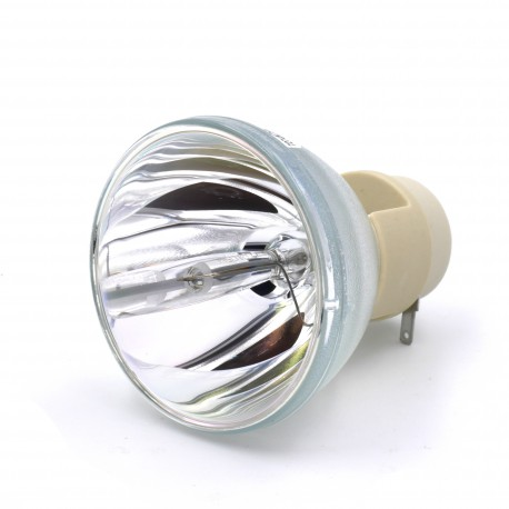 Ampoule seule pour vidéoprojecteur Acer P5390W