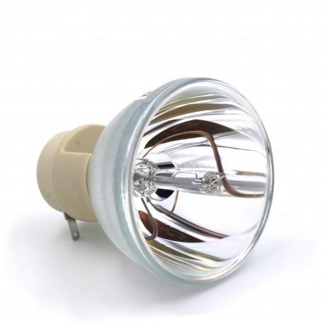 Ampoule seule pour vidéoprojecteur Barco RLM W8