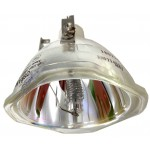 Ampoule seule pour vidéoprojecteur Epson POWERLITE 1965